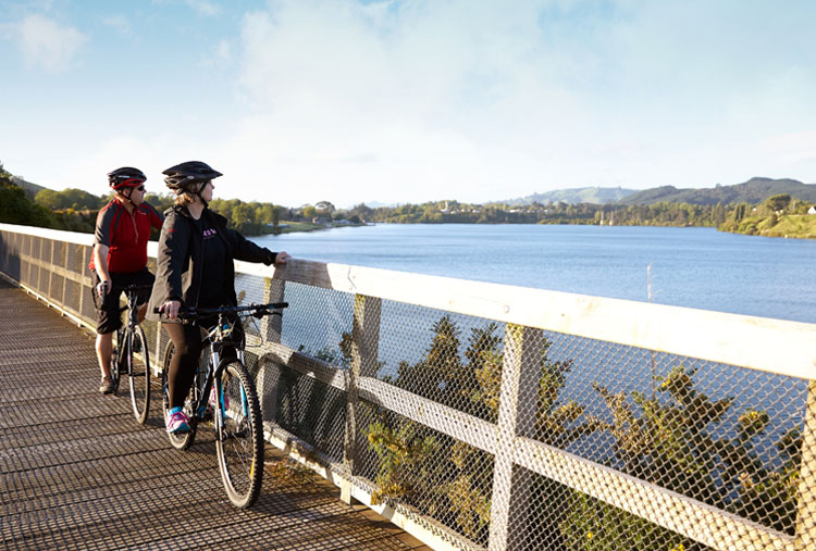 Te Awa Cycle Ride Boardwalk