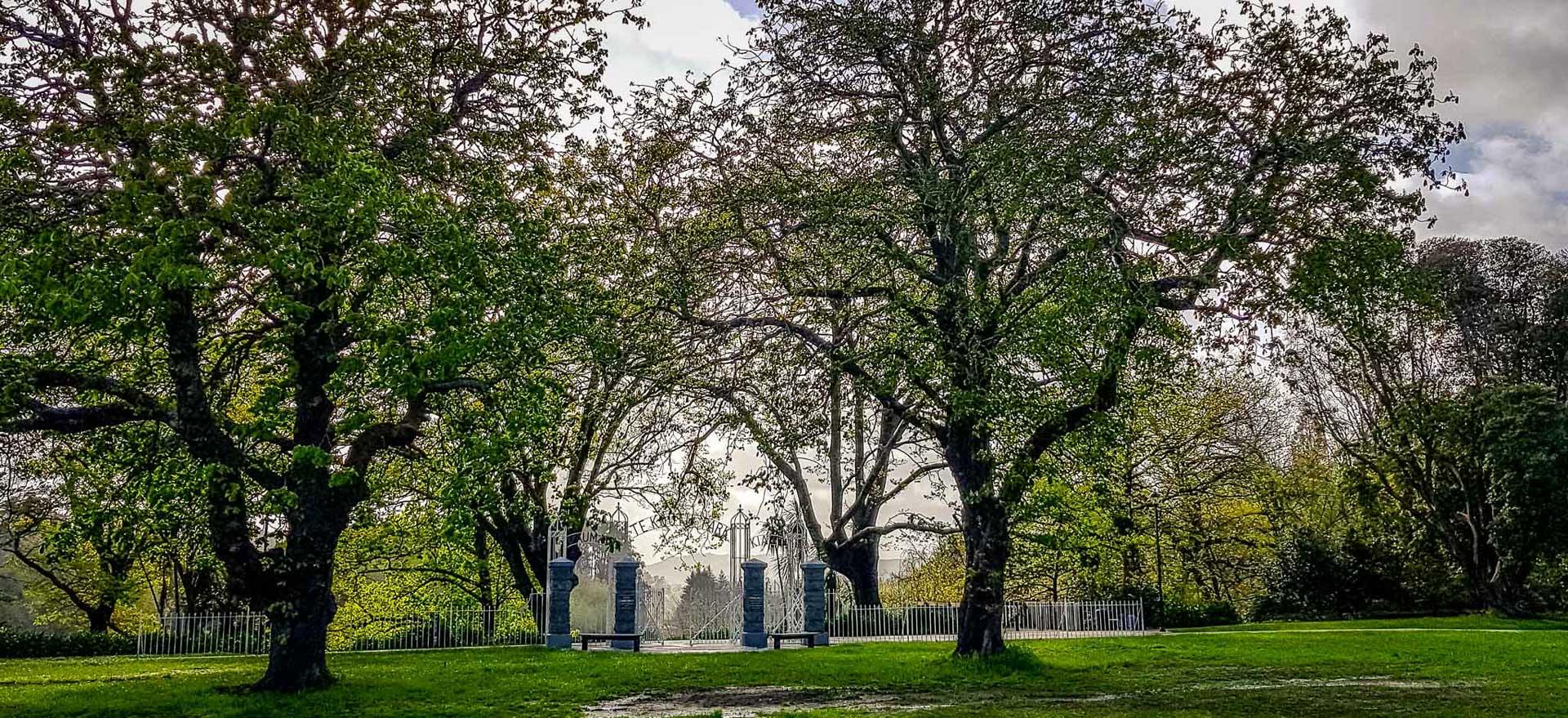Te Koutu Park, Cambridge